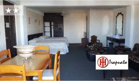 Haz clic aquí para ir al Hotel Irapuato
